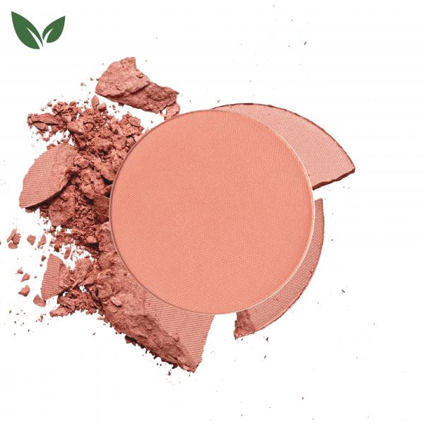 Click Refill Powder Blush 18 Apricot Cheeks
